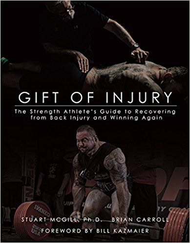 Gift of Injury Book